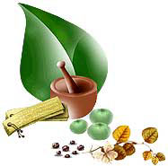 Ayurvedic Medicines - click for more