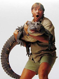 Steve Irwin, Crocodile Hunter